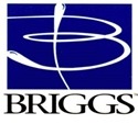 Picture for manufacturer Briggs